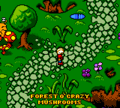 Forest o' Crazy Mushrooms.png